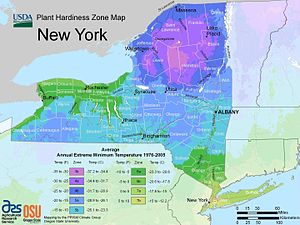 Agriculture in New York - Image: New York plant hardiness zone map 2012