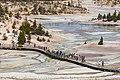 Norris Geyser Basin boardwalks and people (c647aa19-9294-4de3-9f7d-1d89bf37c34a).jpg