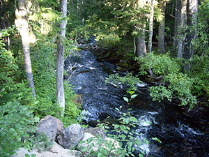 Breitenbush River - Image: North fork of North Fork Breitenbush River