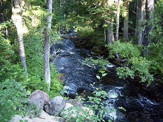 North Fork Breitenbush River river in the United States of America