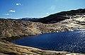 Norwegen 1998 (590) Austerdalsvatnet (49932456693).jpg