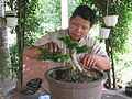 O.Nguyen Phuoc Loc.JPG