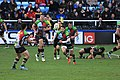 OL-H passes the ball to Ben Botica (12560625754).jpg
