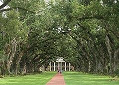 Oak Alley Plantation Wikipedia