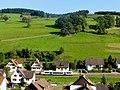 Oberharmersbach, Triebwagen der SWEG zwischen Riersbach und Oberharmersbach-Dorf 1.jpg