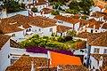 Obidos village rooftops (50170360952).jpg