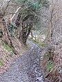 Offas Dyke LDP near Crogen Wladys - geograph.org.uk - 359642.jpg