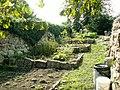 Ogródki warzywne - panoramio.jpg
