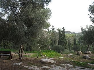 Jewish National Fund - Hulda Forest