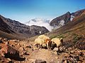 On the way to the Toubkal National Park 02.jpg