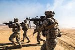 Operation Intrepid Centurion 140219-Z-AR422-034.jpg