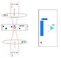 Optical tweezers rays4.PNG