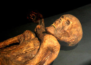 La mummia conservata al Museo archeologico dell'Alto Adige