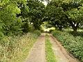 Owlethall Lane - geograph.org.uk - 573830.jpg