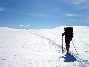Cross-country skiing - Ski touring in untracked terrain.