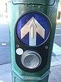 PB5 Pedestrian Button.jpg
