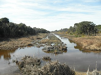 Chemistry of wetland dredging - Canal dredged in a wetland area.