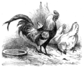 Page 35 illustration to Three hundred Aesop's fables (Townsend).png