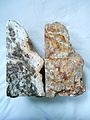 Pair of petrified wood bookends.jpg
