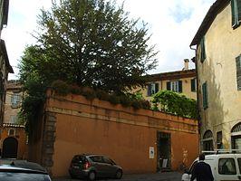 Palazzo Busdraghi