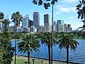 Palm Trees (Royal Botanical Gardens, Sydney) - panoramio.jpg