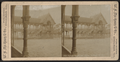 Parade house and grove, Buffalo, N.Y, from Robert N. Dennis collection of stereoscopic views.png