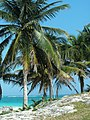 Paradise views in the Tulum Ruins - panoramio.jpg