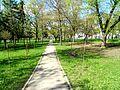 Parcul Central, BL-64.jpg
