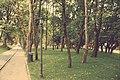 Parcul Central (9523243049).jpg