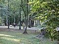 Park - Brwinów 14.jpg