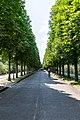 Park Sanssouci, Potsdam (SPSG2258).jpg