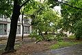 Park Sienkiewicza in Łódź after storm on July 20th, 2011, 12.jpg