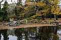 Park Szczytnicki, A-2791-194; PL, DS, powiat Wrocław, gmina Wrocław, Szczytnicki Park; Kriskros; 04.jpg