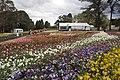 Parkes ACT 2600, Australia - panoramio (81).jpg