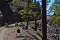 Parque Natural de Tamadaba 28.JPG
