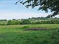 Pasture, Shaftesbury, Dorset. - geograph.org.uk - 440456.jpg