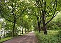 Path in Augsburg.jpg