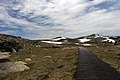 Path to Mount Kosciuszko.jpg