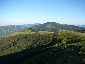 Ograzhden (mountain) - Image: Peak Bilska chuka