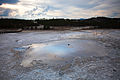 Pearl Geyser - Back Basin, Norris Geyser Basin (3952554077).jpg