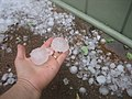 Perth hail size compared to hand.jpg