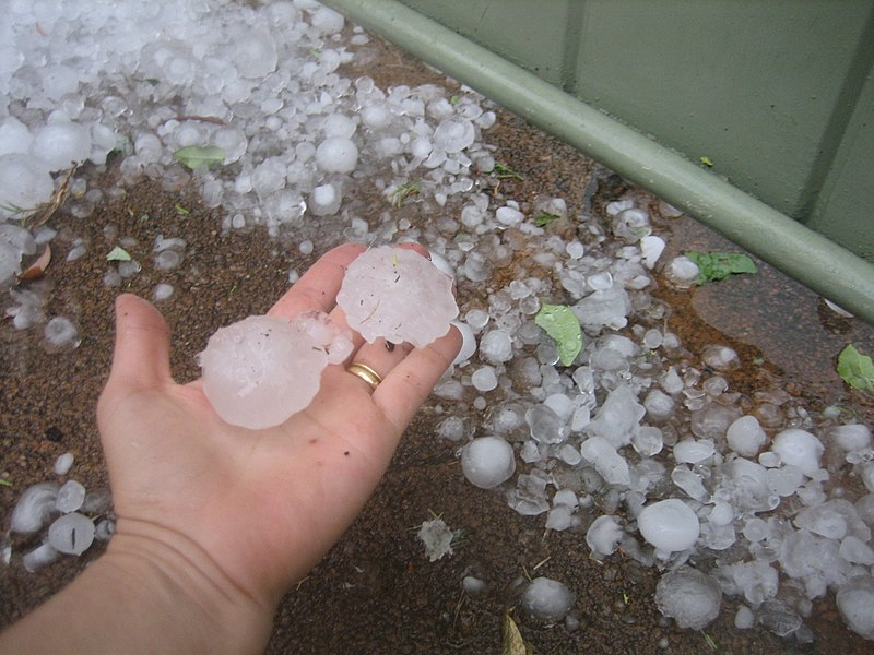 File:Perth hail size compared to hand.jpg