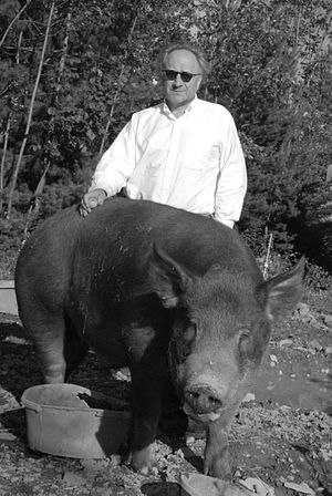 Peter Nadin - Peter Nadin with his boar, Abe, in 2011.