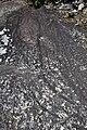 Petroglifo da Serpe nas Branhas de Regoufe.jpg
