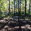 Picnic table at Cypress Lake edge.jpg