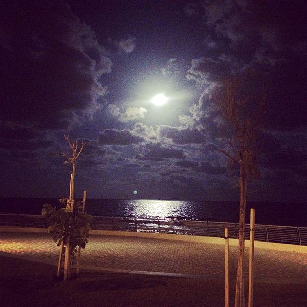 מבט לים חוף הכרמל