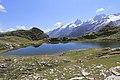 Plateau Emparis-Lac Lérié8-6475~2018 07 23.jpg
