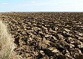 Ploughed field - geograph.org.uk - 537548.jpg