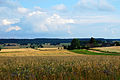 Podlaskie Landscape 07.jpg