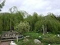 Poland. Warsaw. Powsin. Botanical Garden 021.jpg